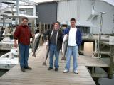 fish51305_2.jpg