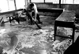 Washing the floor of a local fish and fruit market. L1006805.jpg