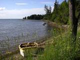 Shoreline ~ Near Red Islands