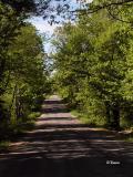 Annapolis Valley Backroad ~ Nova Scotia