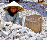 The Vietnam Experience 1966 - 1967