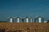 The Grain Gang