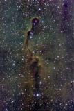 The Elephant's Trunk Nebula  in Cepheus