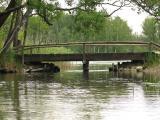 Mostek przy wypływie Sapiny z jez. Kruklin(IMG_3054.JPG)