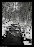 20060222 - More snow -