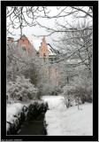 20060305 - No spring, more snow today -