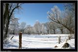 20060312 - More snow -