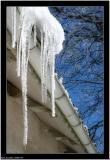 20060319 - Ice -
