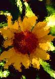 Defused Sunflower