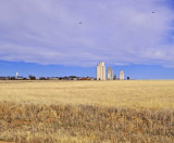 The complete town of Pritchett, CO and elevators.