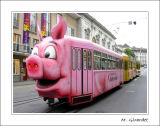 Trans-Porc - 19e place