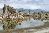 South Mono Lake Tufas (3314)