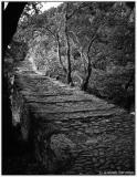 18 Feb 2006 Mountainy path