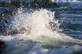 ex foamy spray ocean wave break_MG_9424.jpg