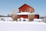 Winter 2008