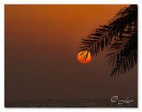 Sunset-Ajman Beach