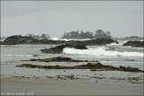 CHESTERMAN BEACH & FRANK ISLAND