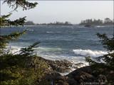 CHESTERMAN BEACH,  TOFINO,  B.C.