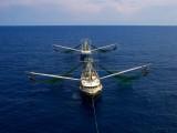 Gulf Shrimpers Take a Break