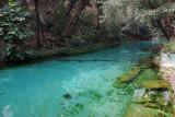 Wikki Warm Springs II