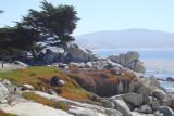 Pebble beach, Ca.