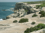 South from Cape Solander – 2