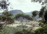 Donkey Mountain