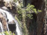 Beside Purlingbrook Falls