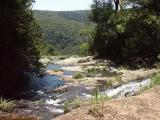 Above Purlingbrook Falls