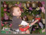 Charlie in the supermarket with flowers