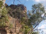 From the Newnes track