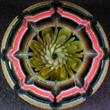 Implocarved Flower Size: 2.27 Price: SOLD