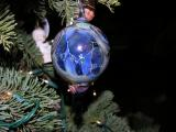 Glass Christmas Ornaments - Various Artists