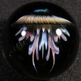 Jumbo Jelly  Size: 1.64  Price: SOLD