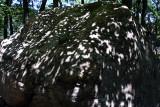 Claudia Smith Den hiking (very hot day)