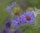 painted weeds.jpg