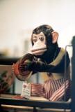 07_monkey_music.JPG