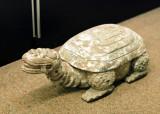 09_turtle.JPG