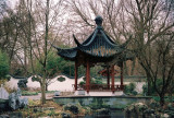 20_chinesegarden.JPG