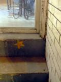 2140110_step_star.JPG