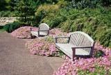 Missouri_Botanical_Gardens_0022.JPG