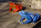 4178_frogs.JPG