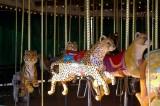 4362_wild_carrousel.JPG