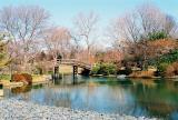 japanese garden2.jpg.jpg