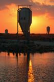 Alien Sunset  - חלליות בשקיעה
