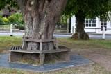 Gouldhurst tree seat