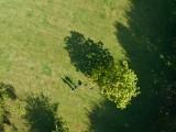 Preston Park long shadow (Hexa)