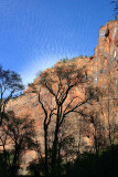 Beautiful colors in Zion
