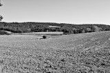 Brittany Land