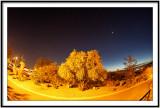 Orion Tucson